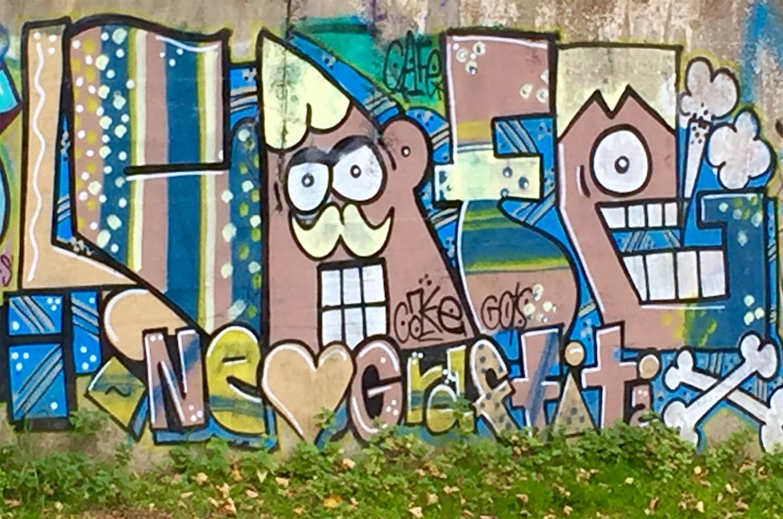 Graffiti along the Birmingham main line canal
