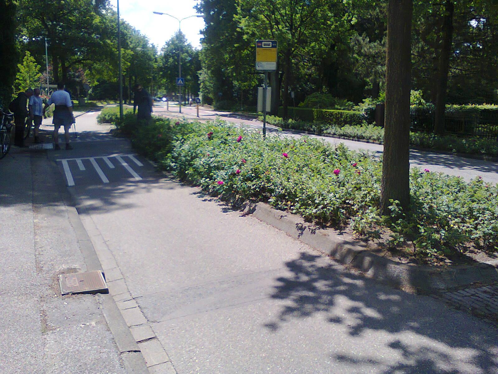 Island bus stop