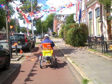 Electrically assisted trike for disabled people